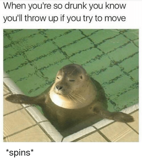 Drunk, Memes, and Throw Up: When you're so drunk you know  you'll throw up if you try to move *spins*