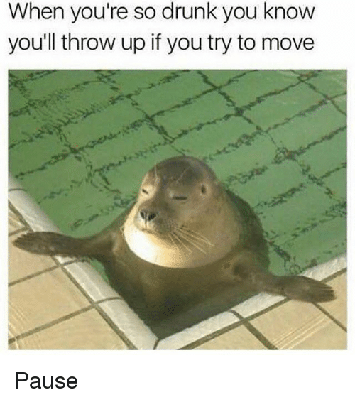 Drunk, Memes, and Throw Up: When you're so drunk you know  you'll throw up if you try to move Pause