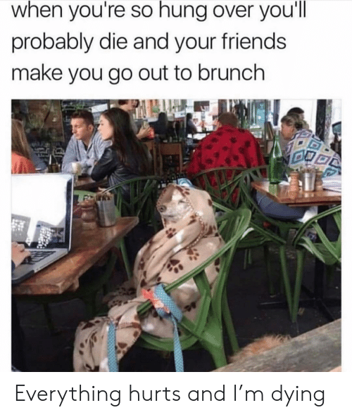 Girl Memes: when you're so hung over you'll  probably die and your friends  make you go out to brunch Everything hurts and I'm dying