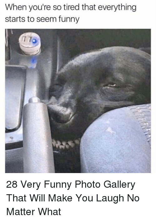 Funny, Photo, and Will: When you're so tired that everything  starts to seem funny  TTO 28 Very Funny Photo Gallery That Will Make You Laugh No Matter What