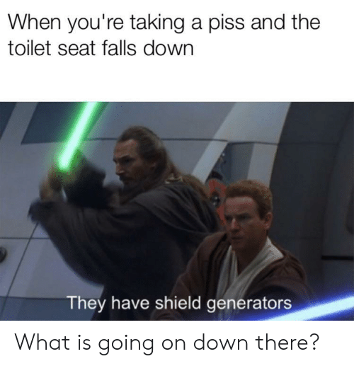 generators: When you're taking a piss and the  toilet seat falls down  They have shield generators What is going on down there?