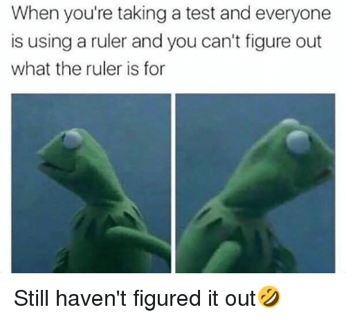 Dank, Ruler, and Test: When you're taking a test and everyone  is using a ruler and you can't figure out  what the ruler is for Still haven't figured it out🤣