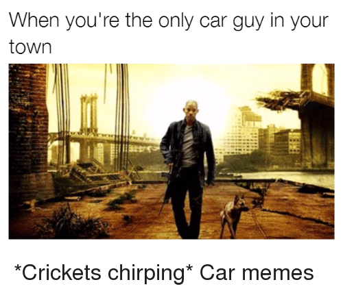 Car Guy: When you're the only car guy in your  town *Crickets chirping* Car memes