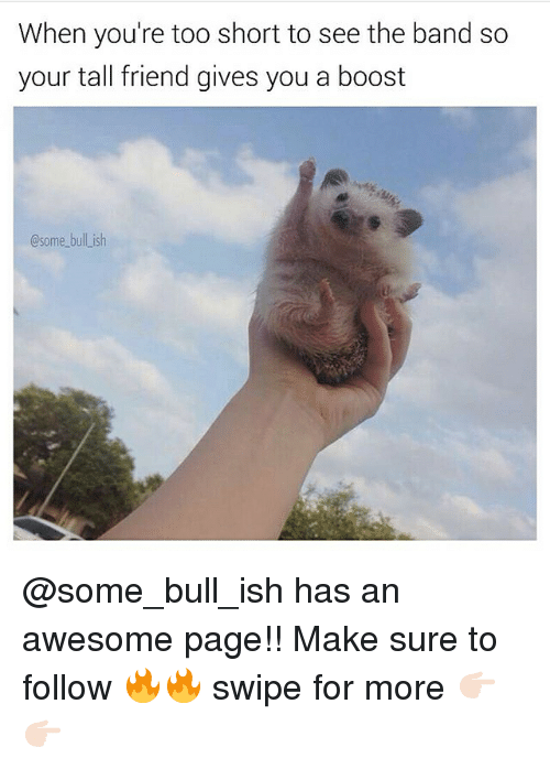 Tall Friend: When you're too short to see the band so  your tall friend gives you a boost  Csome bull ish @some_bull_ish has an awesome page!! Make sure to follow 🔥🔥 swipe for more 👉🏻👉🏻