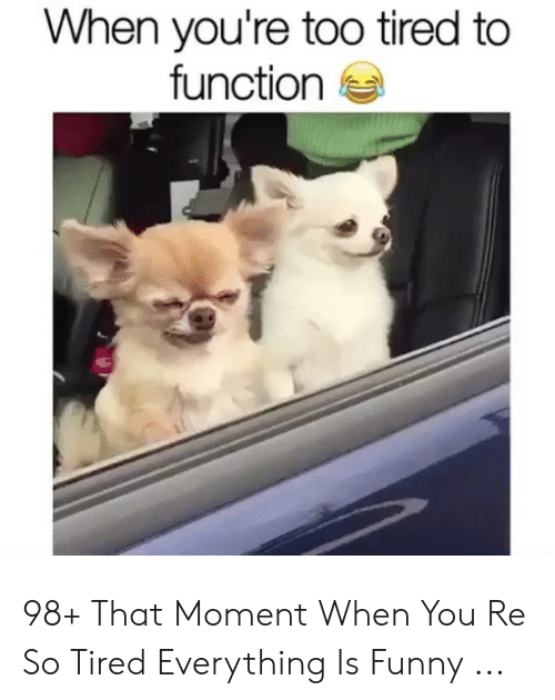 Funny, Function, and Moment: When you're too tired to  function e 98+ That Moment When You Re So Tired Everything Is Funny ...