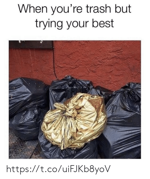 Youre Trash: When you're trash but  trying your best https://t.co/uiFJKb8yoV