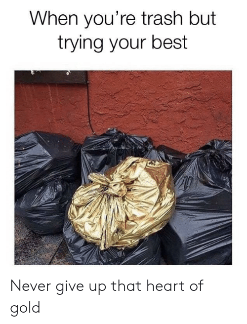 Youre Trash: When you're trash but  trying your best Never give up that heart of gold