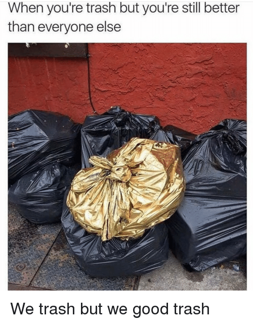 Youre Trash: When you're trash but you're still better  than everyone else We trash but we good trash