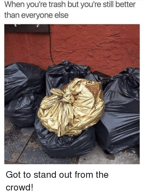 Youre Trash: When you're trash but you're still better  than everyone else Got to stand out from the crowd!