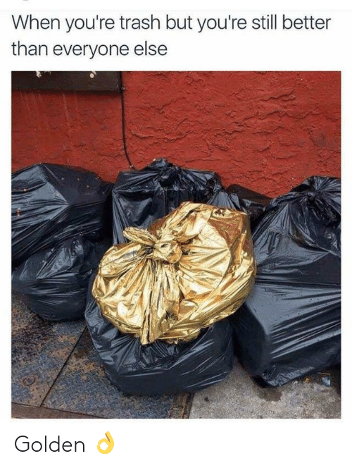 Youre Trash: When you're trash but you're still better  than everyone else Golden 👌
