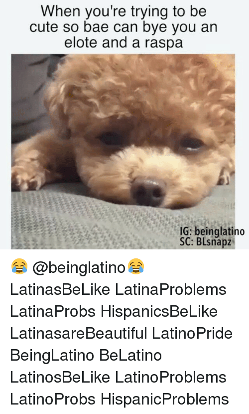 Bae, Cute, and Memes: When you're trying to be  cute so bae can bye you an  elote and a raspa  IG: beinglatino  SC: BLsnapz 😂 @beinglatino😂 LatinasBeLike LatinaProblems LatinaProbs HispanicsBeLike LatinasareBeautiful LatinoPride BeingLatino BeLatino LatinosBeLike LatinoProblems LatinoProbs HispanicProblems