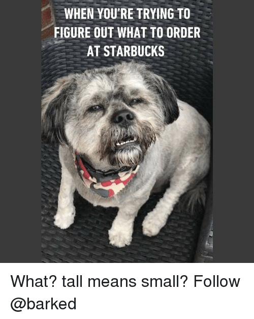Memes, Starbucks, and 🤖: WHEN YOU'RE TRYING TO  FIGURE OUT WHAT TO ORDER  AT STARBUCKS What? tall means small? Follow @barked