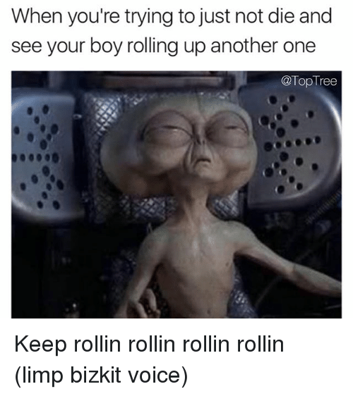 Another One, Memes, and Tree: When you're trying to just not die and  see your boy rolling up another one  @Top Tree Keep rollin rollin rollin rollin (limp bizkit voice)