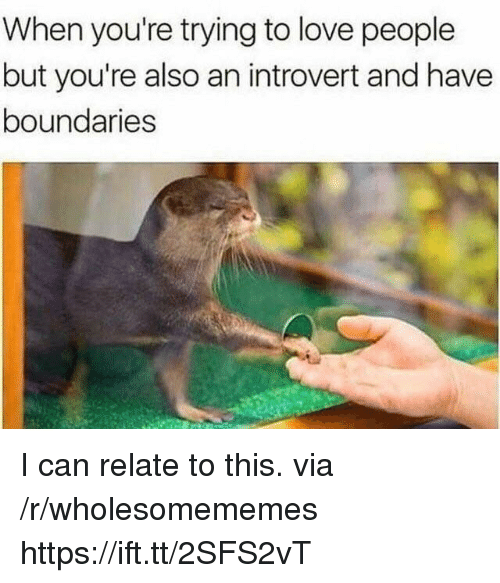 an introvert: When you're trying to love people  but you're also an introvert and have  boundaries I can relate to this. via /r/wholesomememes https://ift.tt/2SFS2vT