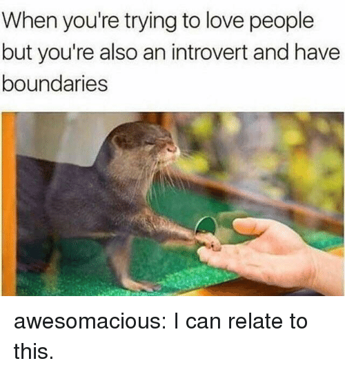an introvert: When you're trying to love people  but you're also an introvert and have  boundaries awesomacious:  I can relate to this.