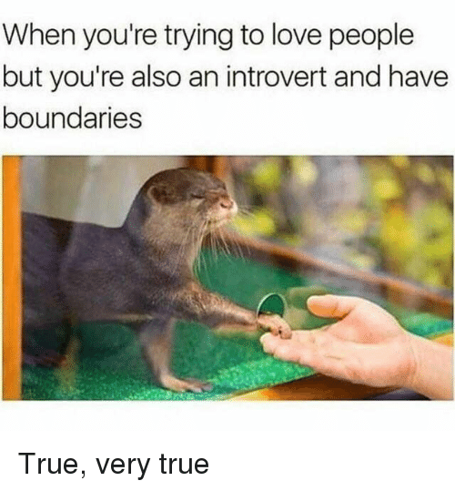 an introvert: When you're trying to love people  but you're also an introvert and have  boundaries True, very true