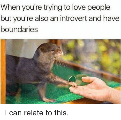 an introvert: When you're trying to love people  but you're also an introvert and have  boundaries I can relate to this.