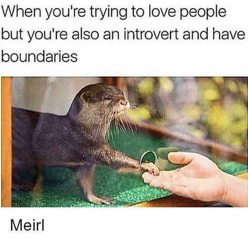 an introvert: When you're trying to love people  but you're also an introvert and have  boundaries Meirl