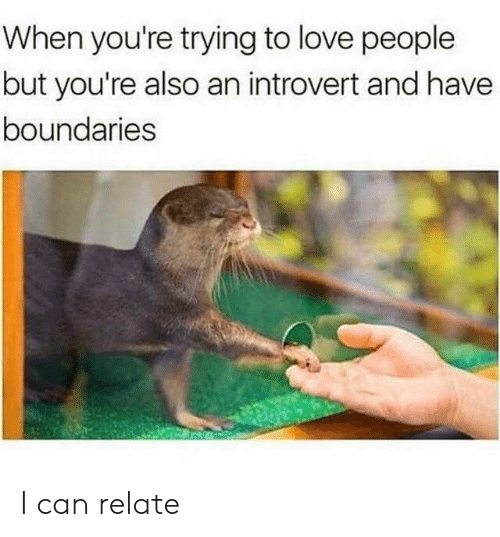 an introvert: When you're trying to love people  but you're also an introvert and have  boundaries I can relate