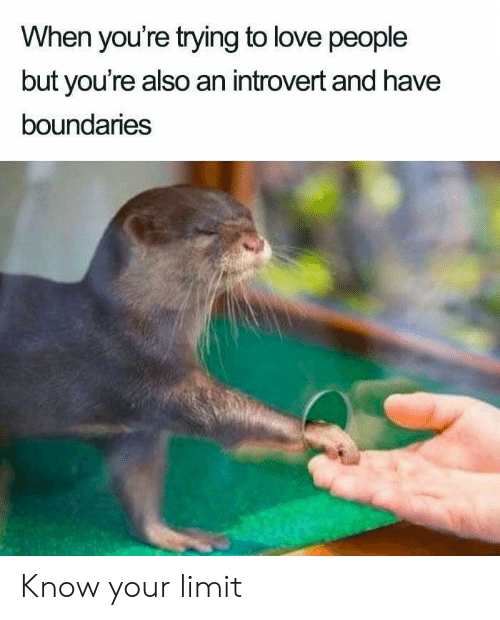 an introvert: When you're trying to love people  but you're also an introvert and have  boundaries Know your limit