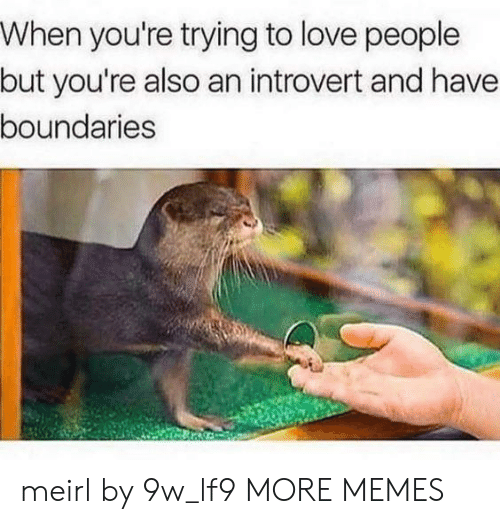 an introvert: When you're trying to love people  but you're also an introvert and have  boundaries meirl by 9w_lf9 MORE MEMES