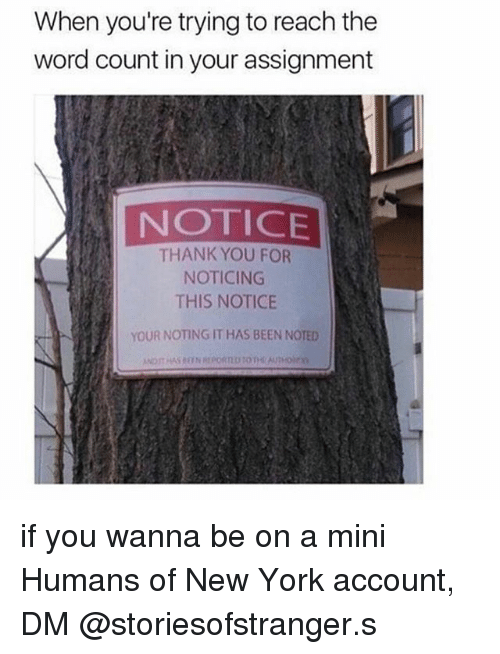 Memes, New York, and Thank You: When you're trying to reach the  word count in your assignment  NOTICE  THANK YOU FOR  NOTICING  THIS NOTICE  YOUR NOTING IT HAS BEEN NOTED if you wanna be on a mini Humans of New York account, DM @storiesofstranger.s
