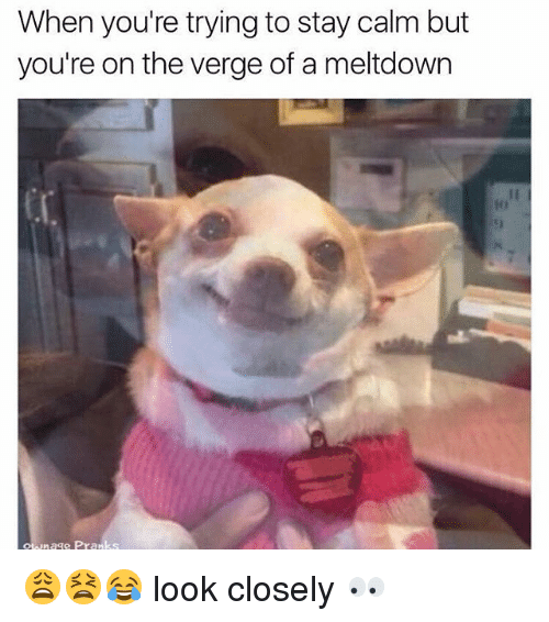 Memes, On the Verge, and 🤖: When you're trying to stay calm but  you're on the verge of a meltdown  拜!  otwn  age Pranks 😩😫😂 look closely 👀
