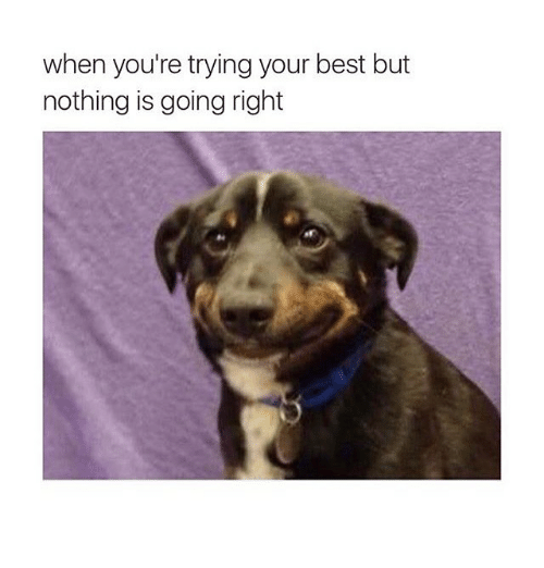 Best, Girl Memes, and Yours: when you're trying your best but  nothing is going right