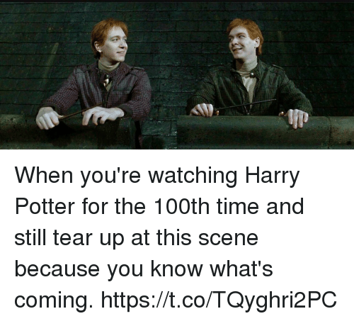 Harry Potter, Memes, and Time: When you're watching Harry Potter for the 100th time and still tear up at this scene because you know what's coming. https://t.co/TQyghri2PC