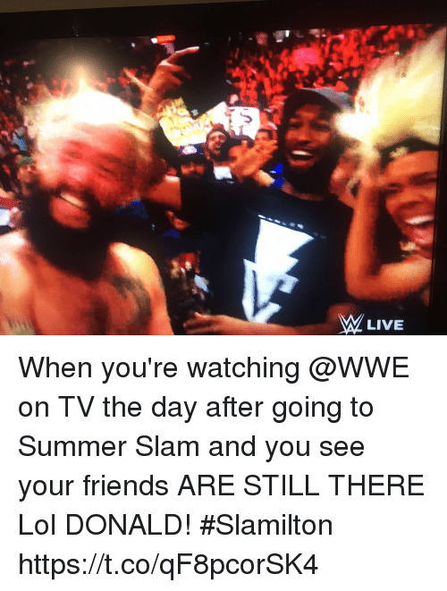 Friends, Lol, and Memes: When you're watching @WWE on TV the day after going to Summer Slam and you see your friends ARE STILL THERE  Lol DONALD! #Slamilton https://t.co/qF8pcorSK4