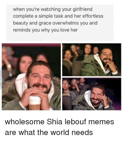 Shia Lebouf: when you're watching your girlfriend  complete a simple task and her effortless  beauty and grace overwhelms you and  reminds you why you love her  wholesome Shia lebouf memes  are what the world needs