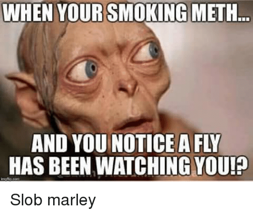 when yoursmoking meth has been watching you p slob marley 5227689 when yoursmoking meth has been watching you!p slob marley meme