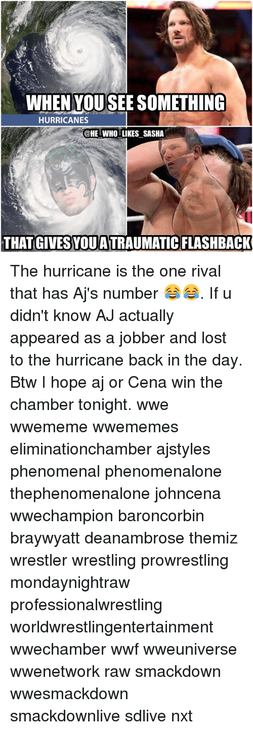 Memes, Phenomenal, and Hurricane: WHEN YOUSEE SOMETHING  HURRICANES  @HE WHO LIKES SASHA  THAT GIVES YOUATRAUMATIC FLASHBACK The hurricane is the one rival that has Aj's number 😂😂. If u didn't know AJ actually appeared as a jobber and lost to the hurricane back in the day. Btw I hope aj or Cena win the chamber tonight. wwe wwememe wwememes eliminationchamber ajstyles phenomenal phenomenalone thephenomenalone johncena wwechampion baroncorbin braywyatt deanambrose themiz wrestler wrestling prowrestling mondaynightraw professionalwrestling worldwrestlingentertainment wwechamber wwf wweuniverse wwenetwork raw smackdown wwesmackdown smackdownlive sdlive nxt