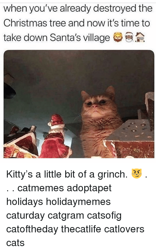 Santas: when you've already destroyed the  Christmas tree and now it's time to  take down Santa's village Kitty's a little bit of a grinch. 😼 . . . catmemes adoptapet holidays holidaymemes caturday catgram catsofig catoftheday thecatlife catlovers cats