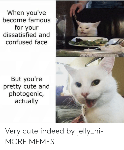 Very Cute: When you've  become famous  for your  dissatisfied and  confused face  But you're  pretty cute and  photogenic,  actually Very cute indeed by jelly_ni- MORE MEMES