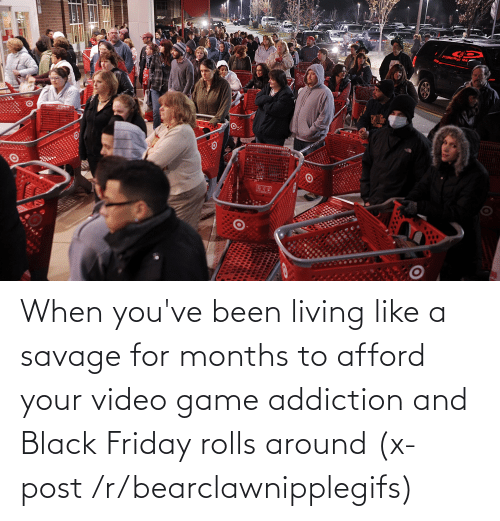 Black Friday: When you've been living like a savage for months to afford your video game addiction and Black Friday rolls around (x-post /r/bearclawnipplegifs)