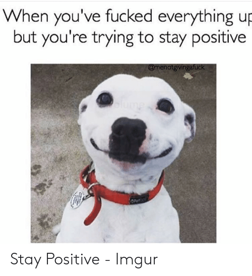 Be Positive Meme: When you've fucked everything up  but you're trying to stay positive