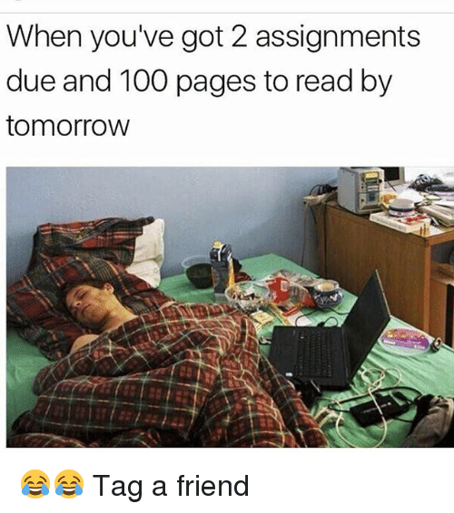 Anaconda, Memes, and Tomorrow: When you've got 2 assignments  due and 100 pages to read by  tomorrow 😂😂 Tag a friend