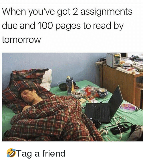 Anaconda, Memes, and 🤖: When you've got 2 assignments  due and 100 pages to read by  tomorrovw 🤣Tag a friend