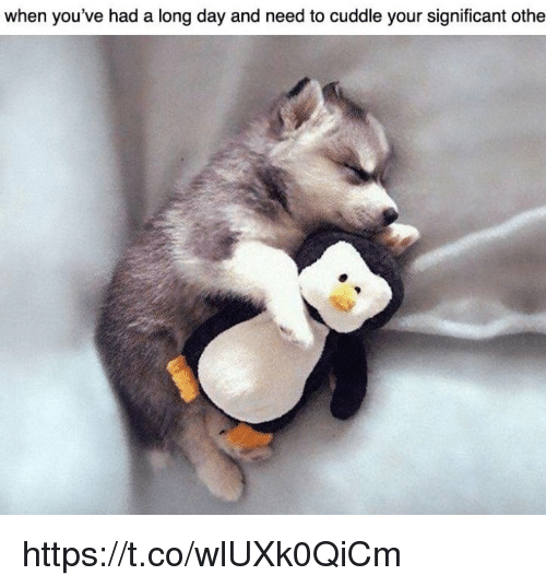 Memes, 🤖, and Day: when you've had a long day and need to cuddle your significant othe https://t.co/wlUXk0QiCm
