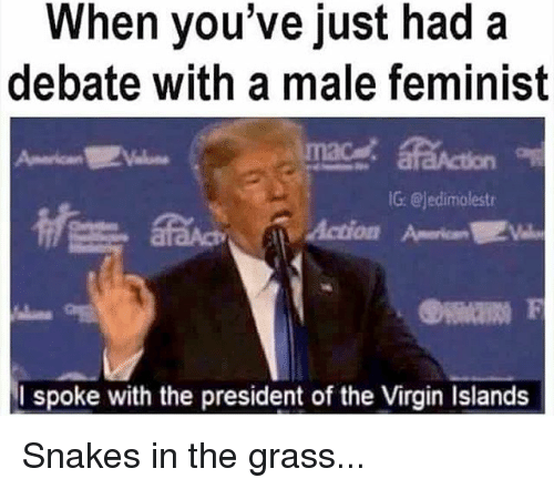 Memes, Virgin, and Snakes: When you've just had a  debate with a male feminist  G @jedimolestr  I spoke with the president of the Virgin Islands Snakes in the grass...