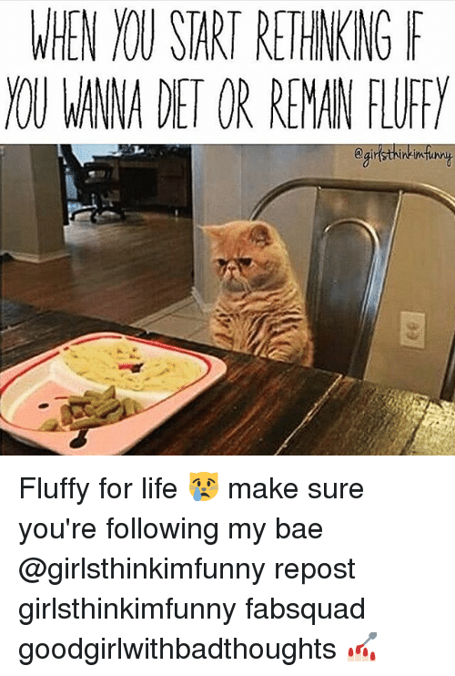 manna: WHEN YU SART RETHINKING F  MANNA DET OR REMAN FLUFFY Fluffy for life 😿 make sure you're following my bae @girlsthinkimfunny repost girlsthinkimfunny fabsquad goodgirlwithbadthoughts 💅🏻