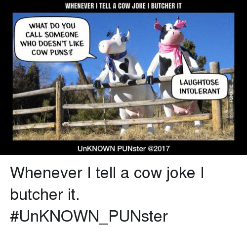 Cow Joke: WHENEVER I TELL A COW JOKE I BUTCHER IT  WHAT DO YOU  CALL SOMEONE  WHO DOESN'T LIKE  COW PUNS  LAUGHTOSE  INTOLERANT  UnKNOWN PUNster @2017 Whenever I tell a cow joke I butcher it. #UnKNOWN_PUNster