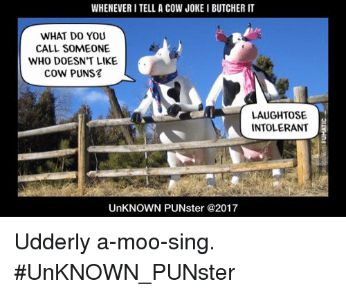 Cow Joke: WHENEVER I TELL A COW JOKE I BUTCHER IT  WHAT DO YOU  CALL SOMEONE  WHO DOESN'T LIKE  COW PUNS  LAUGHTOSE  INTOLERANT  UnKNOWN PUNster @2017 Udderly a-moo-sing. #UnKNOWN_PUNster