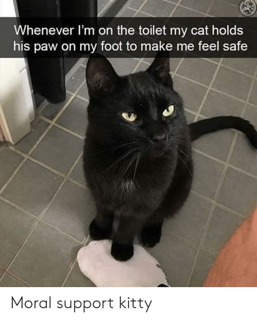 paw: Whenever l'm on the toilet my cat holds  his paw on my foot to make me feel safe Moral support kitty
