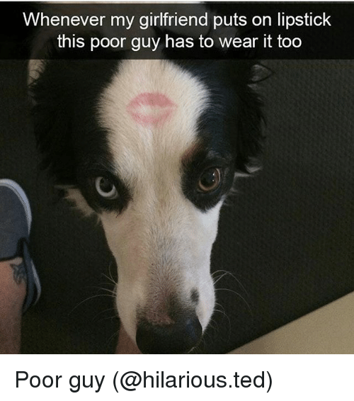 Funny, Ted, and Girlfriend: Whenever my girlfriend puts on lipstick  this poor guy has to wear it too Poor guy (@hilarious.ted)