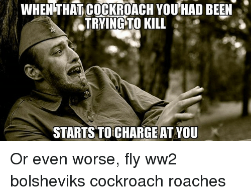 cockroaches: WHENTHAT COCKROACH YOU,HAD BEEN  ATRYINGPTO KILL  STARTSTO CHARGE AT YOU Or even worse, fly ww2 bolsheviks cockroach roaches
