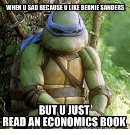 Bernie Sanders, Memes, and Book: WHENU SAD BECAUSE ULIKE BERNIE SANDERS  BUT U JUST  READ AN ECONOMICS BOOK