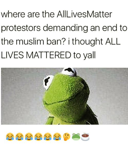 All Lives Matter, All Lives Matter, and Memes: where are the AllLivesMatter  protestors demanding an end to  the muslim ban? i thought ALL  LIVES MATTERED to yall 😂😂😂😂😂😂🤔🐸☕