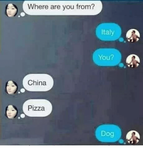 Memes, 🤖, and Dog: Where are you from?  Italy  You?  China  Pizza  Dog